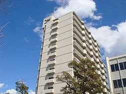 ライオンズマンション広畑正門通[1103号室]の外観
