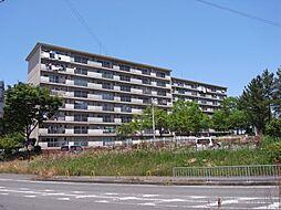 新家駅 6.0万円