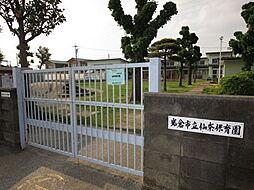 仙奈保育園 徒歩 約11分(約850m)