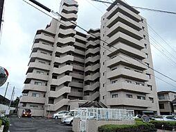 コアマンション江平[99号室]の外観