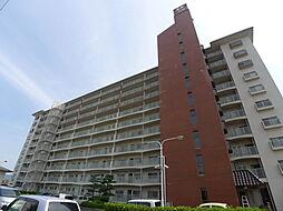 木太17マンション[203号室]の外観