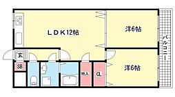 兵庫県神戸市東灘区甲南町4丁目の賃貸マンションの間取り