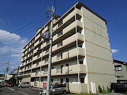 サンクリエートハヤシ壹號舘[5階]の外観