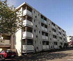 神奈川県鎌倉市手広5丁目の賃貸マンションの外観