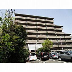 スカール喜多川A棟[3階]の外観