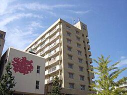 南国産業ビル[503号室]の外観