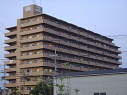 ライオンズマンション泉南樽井第二[6階]の外観