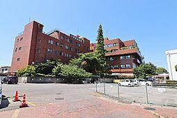 小林記念病院536m