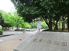 教育の森公園(徒歩5分)
