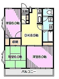 埼玉県新座市西堀1丁目の賃貸マンションの間取り