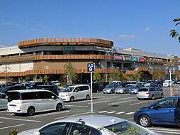 [一戸建] 東京都八王子市東浅川町 の賃貸【東京都 / 八王子市】の外観