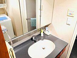 シャワー付洗面化粧台・小物収納も豊富です
