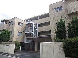 埼玉県さいたま市浦和区常盤8丁目の賃貸マンションの外観