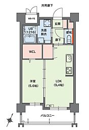 クラシオン小笹山手5番館 6階1LDKの間取り