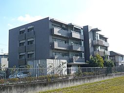 大阪府茨木市白川1丁目の賃貸マンションの外観