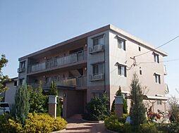 ステラ大善寺[301号室]の外観