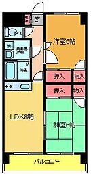 サンライトA・F[203号室]の間取り