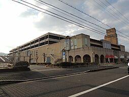 桃山南口駅 4.6万円