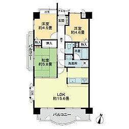 ライオンズマンション道後姫塚第2[903 号室号室]の間取り