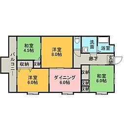 静岡県浜松市南区倉松町の賃貸マンションの間取り