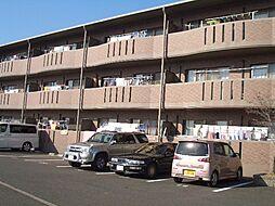 高知県高知市南久万の賃貸マンションの外観