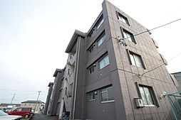 愛知県名古屋市南区白雲町の賃貸マンションの外観