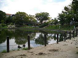 [一戸建] 兵庫県西宮市菊谷町 の賃貸【/】の外観