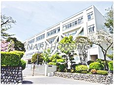 中学校昭島市立拝島中学校まで931m