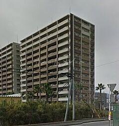 エバーライフパセオ博多南[7階]の外観