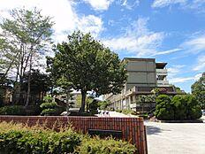 岩岡中学校 約520m