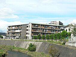 静岡県三島市壱町田の賃貸マンションの外観