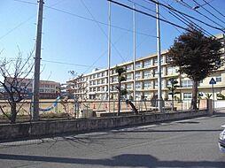 オーシャンビュー江井ヶ島[503号室]の外観