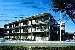 グランシャリオ中田北[105s号室]の外観