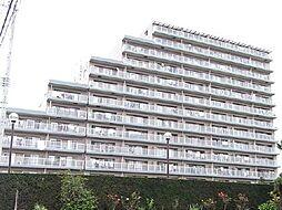 白井ロジュマン[6階]の外観