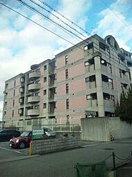 MIZUKI武庫之荘[305号室]の外観