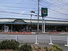 マルエツ東久留米店まで830m、マルエツ東久留米店まで徒歩約11分。