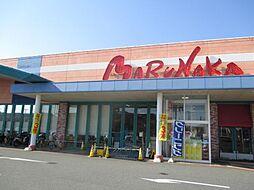 [一戸建] 兵庫県神戸市西区南別府4丁目 の賃貸【/】の外観