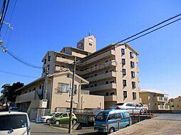 サンピエール中野[2階]の外観