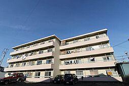 山梨県中巨摩郡昭和町清水新居の賃貸マンションの外観