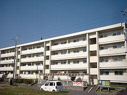 奈良県大和郡山市馬司町の賃貸マンションの外観