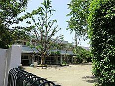 武蔵野中央第二幼稚園まで446m