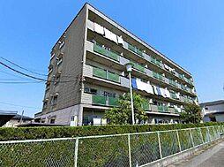 千葉県松戸市南花島の賃貸マンションの外観