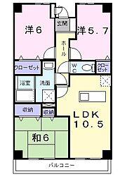 昭和エクセランマンション[0304号室]の間取り