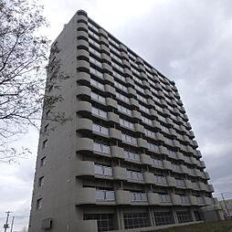 ビレッジハウス桜台タワー1号棟[14階]の外観