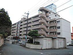 新栄二日市ハイツ[401号室]の外観
