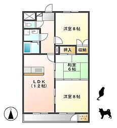 愛知県名古屋市千種区南ケ丘2丁目の賃貸マンションの間取り