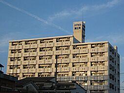 エクセル富士見[301号室]の外観