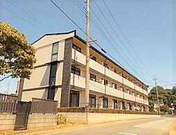 埼玉県さいたま市岩槻区府内4丁目の賃貸マンションの外観