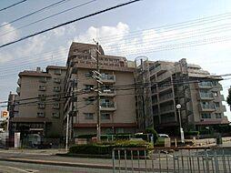 堺市北区金岡町