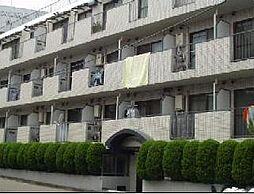 シャトレ・ナガシマ[1階]の外観